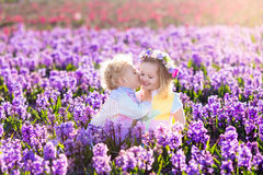 kids-playing-blooming-garden-hyacinth-flowers-gardening-children-play-outdoors-hyacinths-meadow-little-girl-boy-87894378