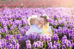 kids-playing-blooming-garden-hyacinth-flowers-gardening-children-play-outdoors-hyacinths-meadow-little-girl-boy-87894378
